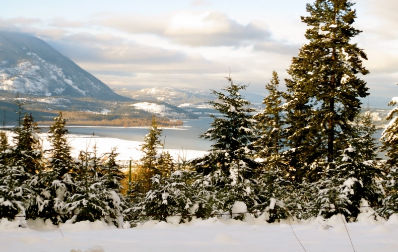 Shuswap Lake in Winter