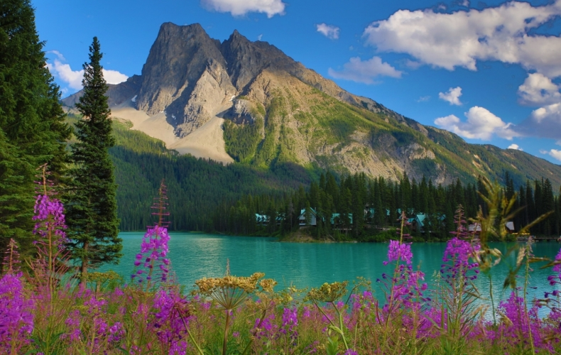Emerald Lake in the Summer
